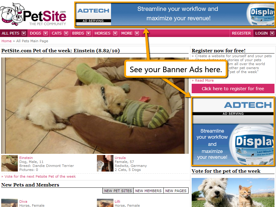 Display banner ads